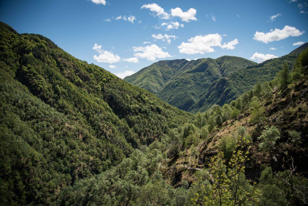 Blick ins grüne Maggiatal