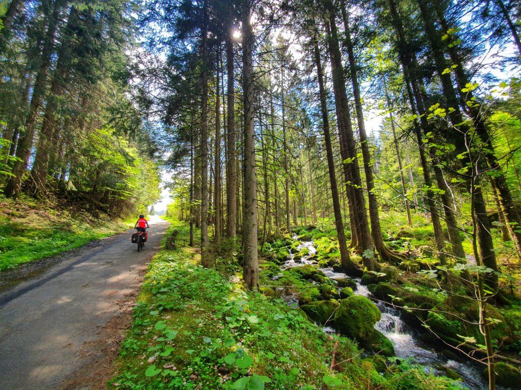 Radfahren durch idyllische Wälder mit sprudelnden Bächen